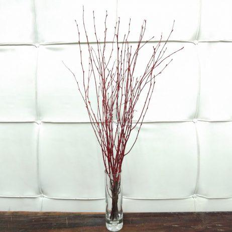 Dried Flower - Birch Twigs Red 60cm (Per Bundle) 2210