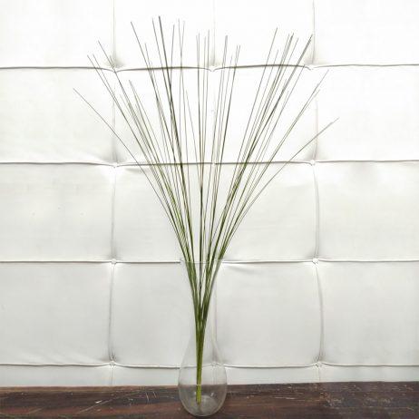 Fresh Cut Flowers - Flexigrass (Per Bundle) 2210